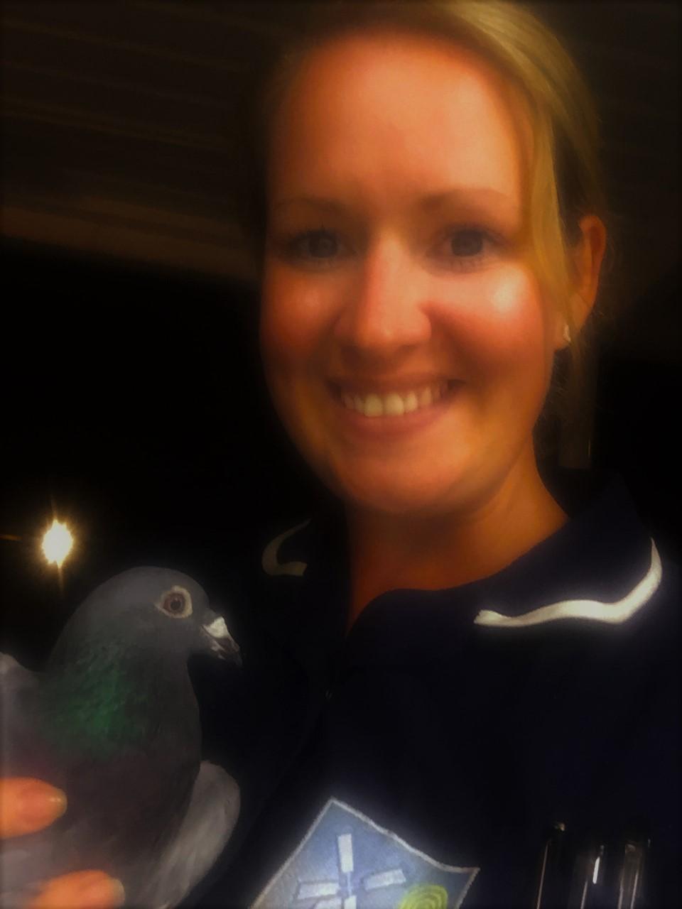 tara pigeon